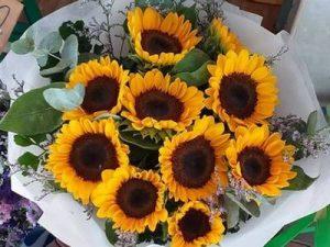 Florist-Bangkok - Sunflowers Delivery Bangkok